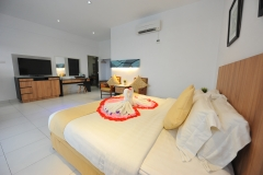 Executive Suite Full View